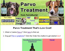 Thumbnail screenshot of ParvoTreatment.org